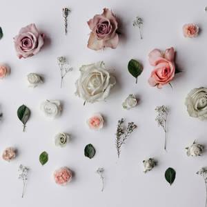 Floristry Masterclass
